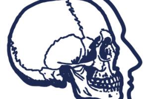 Curso de Anatomia e fixação Interna rígida Aplicada a Procedimentos de Cirurgia Buco Maxilo Facial em Cadáver.